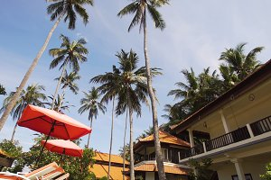 Tropical landscape with palm trees, hotel.