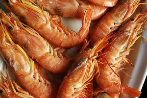 Cooked prawns in a tray