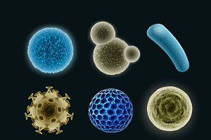 Set of different bacteria and virus