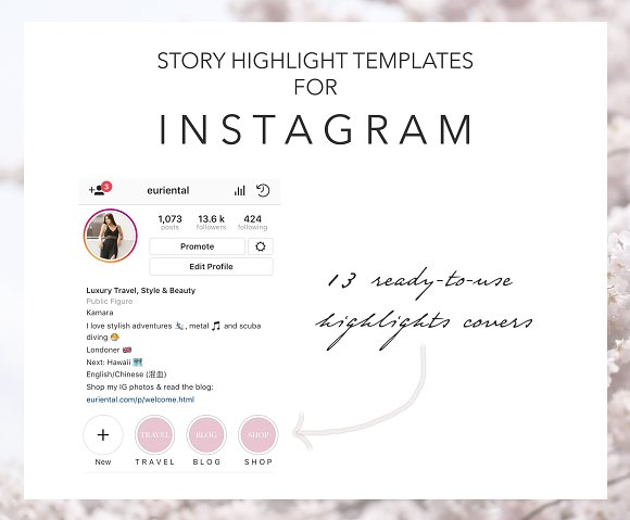 Instagram Story Highlight Cover Pink in Instagram Templates