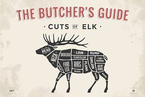Butcher diagram, scheme - Elk