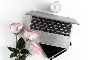 Pink Roses & Laptop Stock Photo