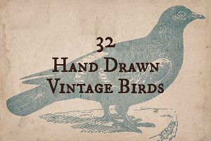 32 Hand Drawn Vintage Birds