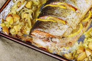 Salmon fillets baked in oven served