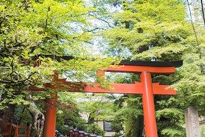 torii gate in mountain town