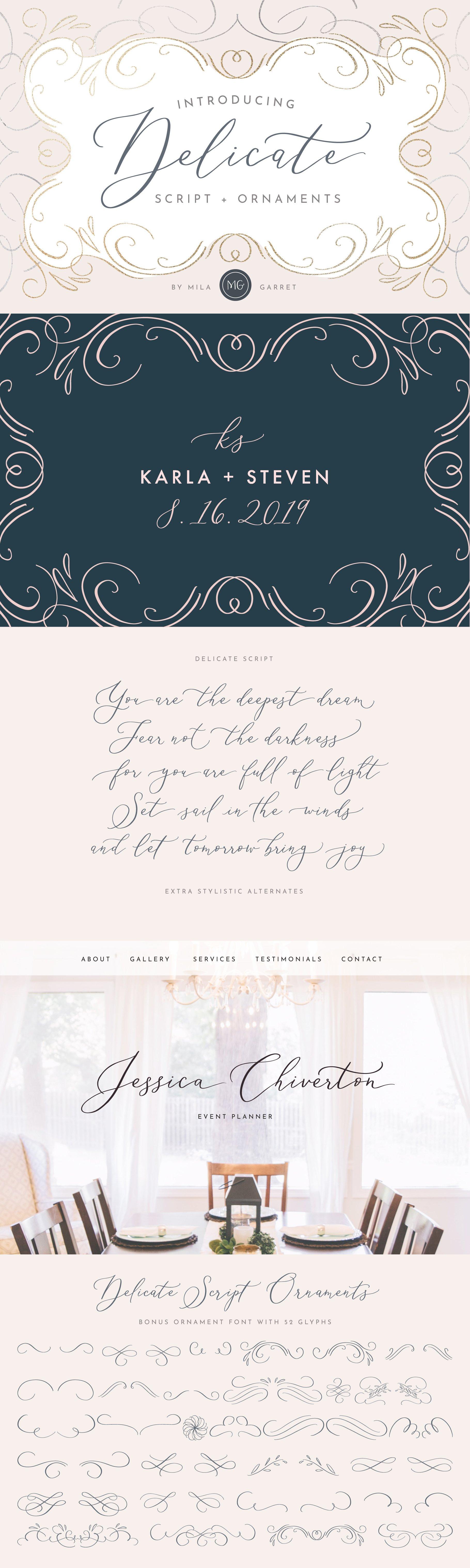 Delicate Elegant Script Ornaments Fonts Creative Market