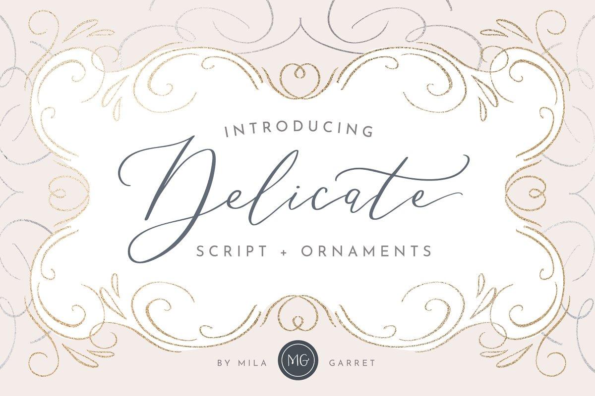 Delicate Elegant Script & Ornaments