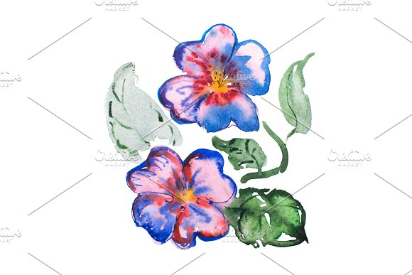 Watercolor Drawing Of Fresh Flowers Aquarelle Painting