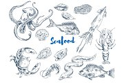 Exotic Seafood Monochrome Sketch Illustrations Set