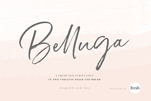 Belluga Brush Rough & Smooth