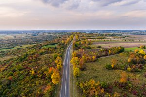 Road and colorful trees in Poland