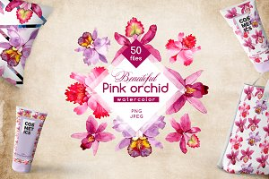 Pink orchid PNG watercolor set
