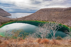 Brackish Lagoon in Galapagos