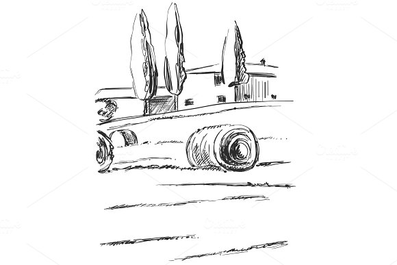 Hand Made Vector Sketching Landscape Fields Harvest Agricultural