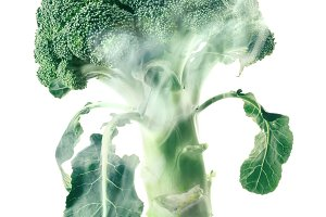 Broccoli head envelops smoke steam isolated white background