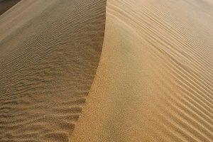 Sand Dune Ridge