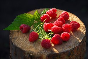 Fresh red raspberries on stump. Clos