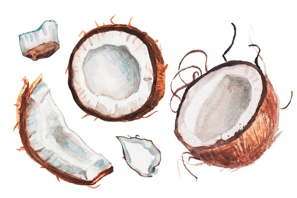 Coconut Milk – A reliable choice for every home!