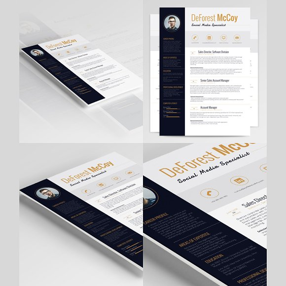 3 Resume Templates Bundle in Resume Templates - product preview 2