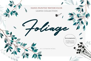 Foliage.Watercolor leaves collection