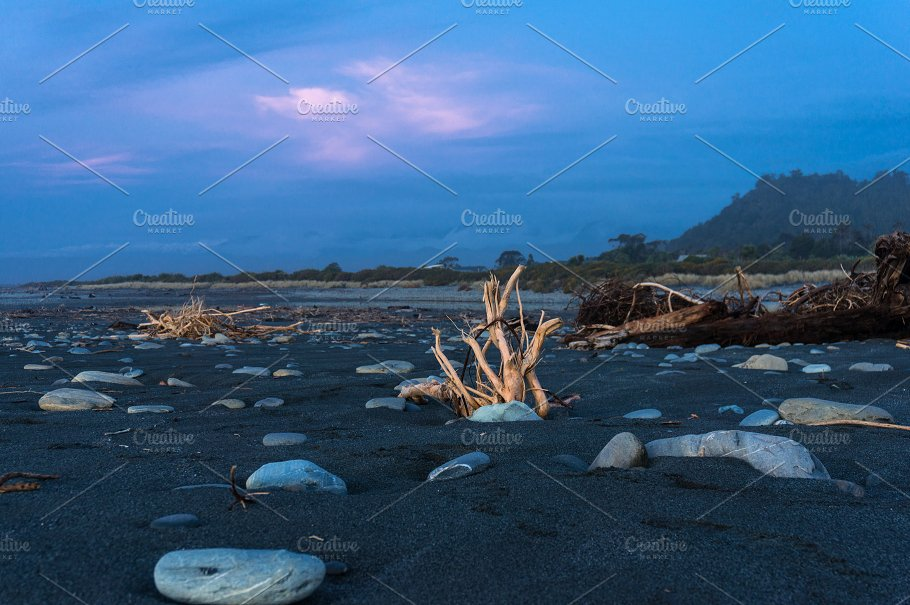 Driftwood On The Beach At Sunset Nature