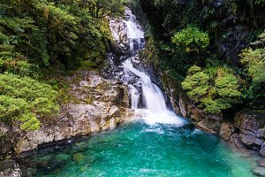 Waterfall in tropical rainforest, New Zealand