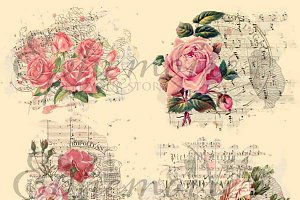 Shabby Chic Rose Blendable Overlays