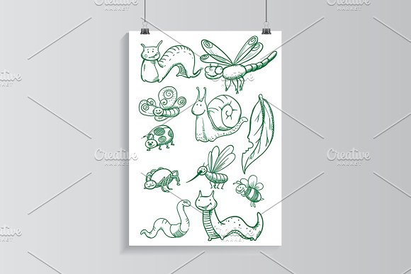 Drawn insects set.