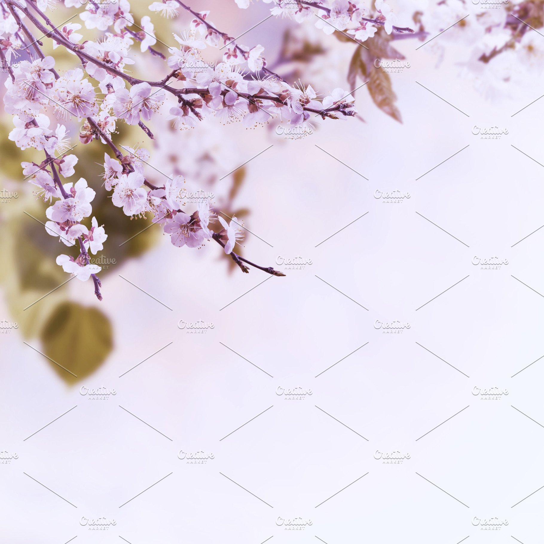 Vintage Floral Background High Quality Nature Stock Photos