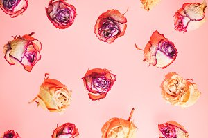 Decoration made of dried rose flowers. Roses background
