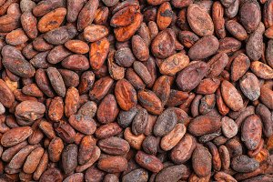 Raw Cocoa Beans Background