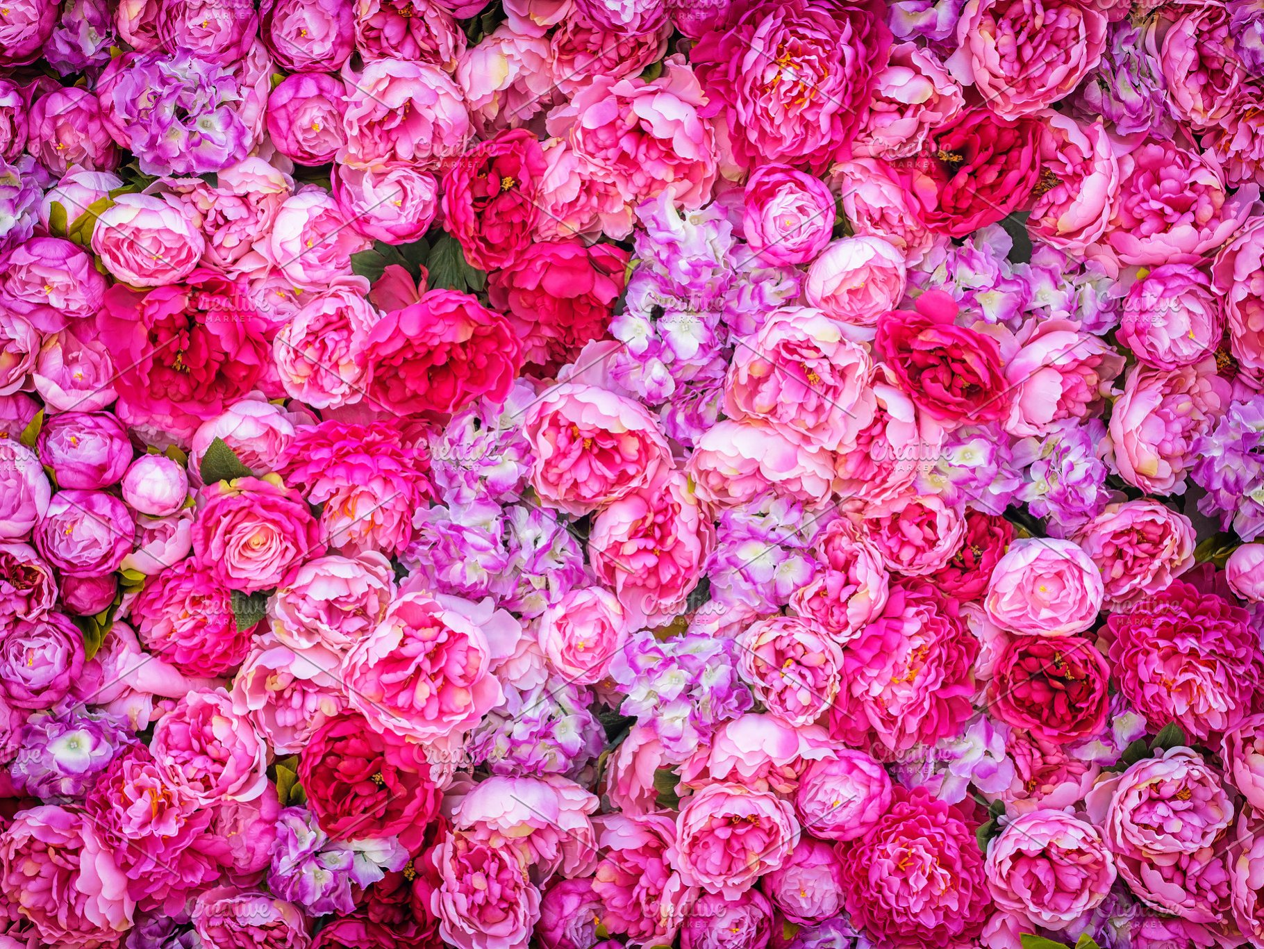 Beautiful Background Of Artificial Pink Peonies Wedding Festive