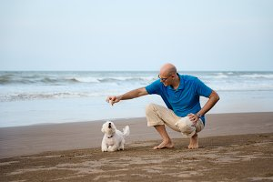 Man playing with dog at the beach