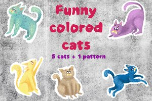 Funny colored cats