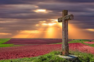 A cross in the field
