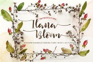 Ilana Bloom Script
