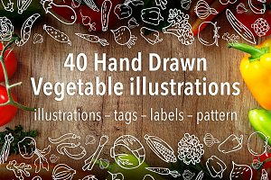40 Hand Drawn Vegetable Illustration