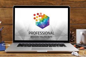 Professional Cube Logo