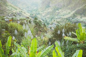 Landscape of banana and sugar cane plantation in front of the green mountains of the Paul Valley, on the island of Santo Antao, Cape Verde