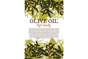 Olive oil sketch poster with green leaf and fruit