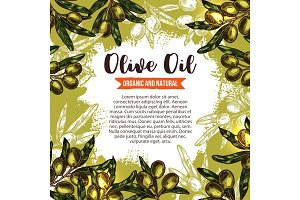 Green olive branch poster for oil label design