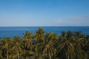 Sea landscape with the sea and palm trees.Aerial view:Camiguin island Philippines.