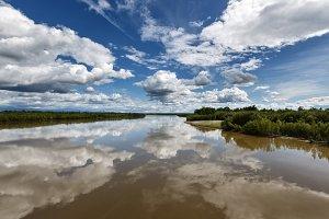 Summer reflection river landscape