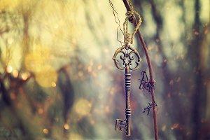 vintage key on the tree