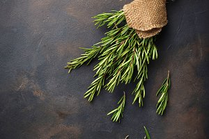 Bunch of fresh rosemary on dark background