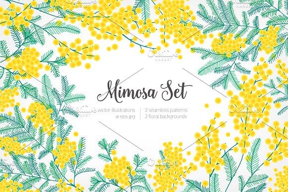 Mimosa Happy Women's Day