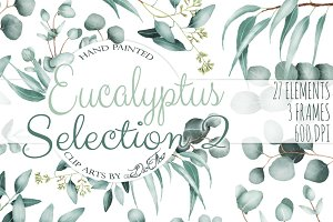 Eucalyptus 2 Watercolor Clip Art