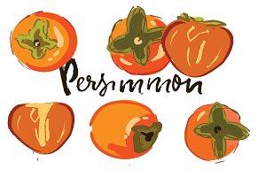 Persimonn illustration kit