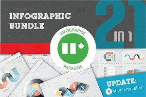 Infographic Bundle (21 in 1)