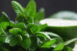 Close-up of fresh mint